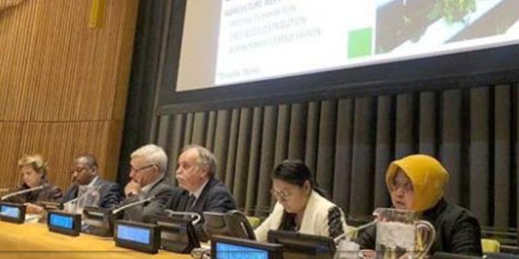 Di Forum PBB, Risma Bicara Soal Ketahanan Pangan hingga Pengentasan Kemiskinan
