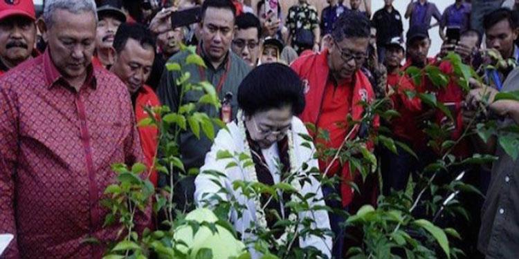 Kontemplasi Politik Lingkungan Model PDIP Patut Dicontoh