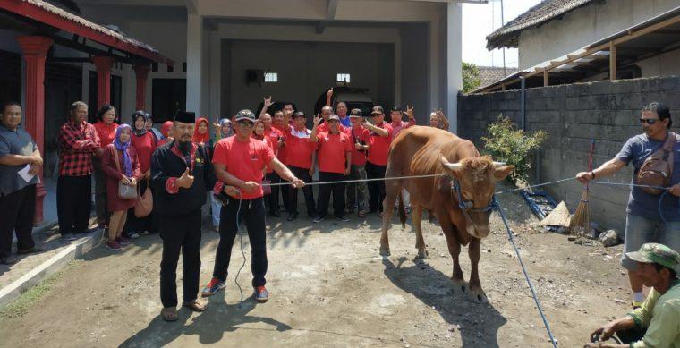 Pulang Kongres, Pengurus PDIP Kabupaten Kediri Langsung Berkurban Sapi