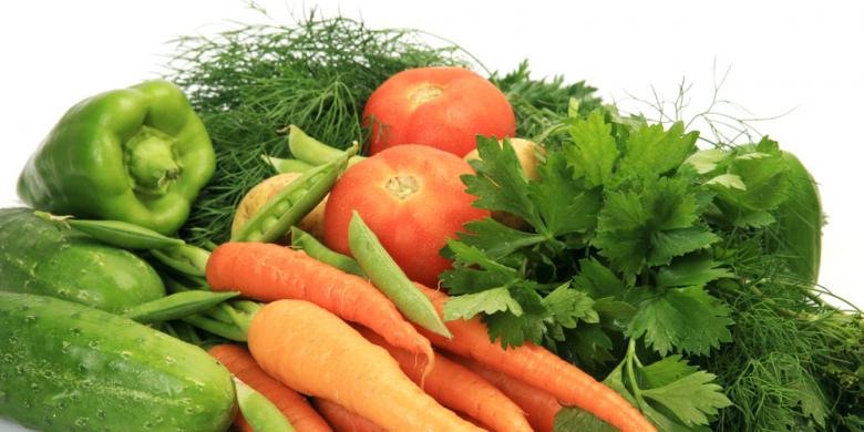 pdip jatim ilustrasi sayuran